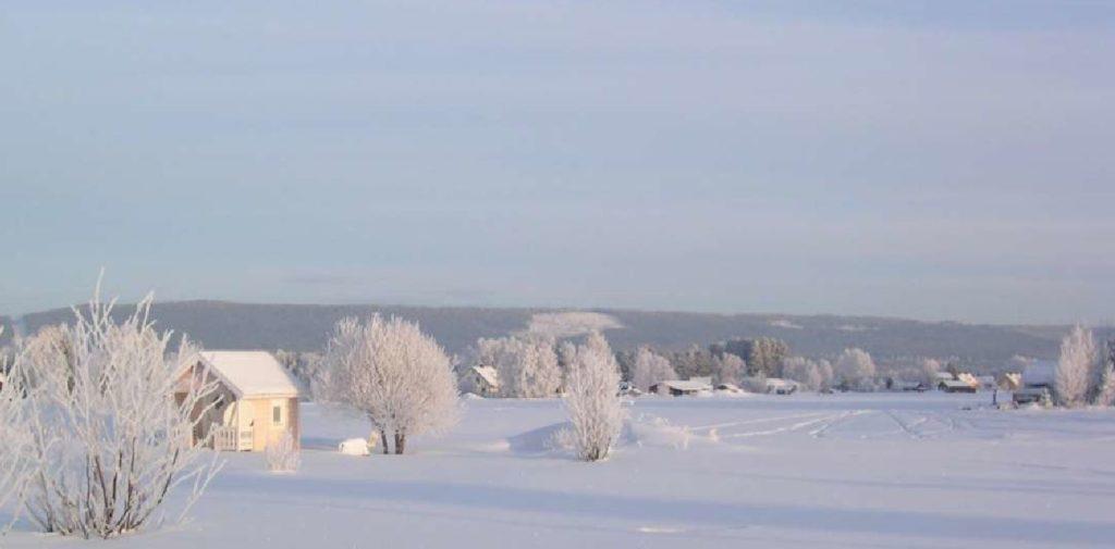 natur-vinter